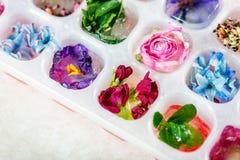 Δίσκος με τα παγωμένα λουλούδια στους κύβους πάγου στοκ φωτογραφία με δικαίωμα ελεύθερης χρήσης