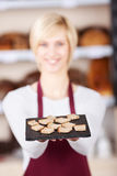 Δίσκος ψωμιού εκμετάλλευσης σερβιτορών στον καφέ Στοκ φωτογραφίες με δικαίωμα ελεύθερης χρήσης