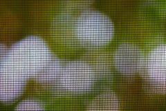 δίχτυα κουνουπιών Στοκ Εικόνες