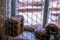 Δίχτυα του ψαρέματος που διακοσμούνται στοκ φωτογραφίες με δικαίωμα ελεύθερης χρήσης