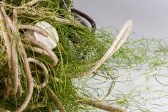 Δίχτυα του ψαρέματος σε ένα άσπρο υπόβαθρο Στοκ φωτογραφία με δικαίωμα ελεύθερης χρήσης