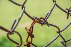 Δίχτυ καλωδίων Korosing Στοκ εικόνες με δικαίωμα ελεύθερης χρήσης