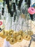 Δίχτυ του ψαρέματος στο αγρόκτημα Στοκ εικόνες με δικαίωμα ελεύθερης χρήσης