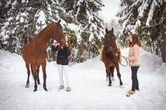 Δίδυμα αδελφές και άλογο στο χειμερινό δάσος στοκ φωτογραφία