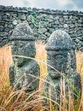 Δίδυμα είδωλα Jeju (Dolharubang, οι πέτρες παππούδων) σε Seon Στοκ εικόνες με δικαίωμα ελεύθερης χρήσης