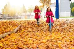Δίδυμα κορίτσια στο ρόδινο οδηγώντας μηχανικό δίκυκλο παλτών στα φύλλα σφενδάμου Στοκ φωτογραφία με δικαίωμα ελεύθερης χρήσης