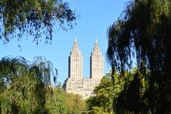 Δίδυμοι πύργοι από το Central Park Στοκ φωτογραφίες με δικαίωμα ελεύθερης χρήσης