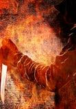 Δαίμονας πυρκαγιάς Στοκ φωτογραφία με δικαίωμα ελεύθερης χρήσης