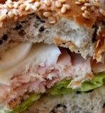 δαγκωμένο σάντουιτς Στοκ Φωτογραφίες
