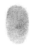 δακτυλικό αποτύπωμα Στοκ Φωτογραφία