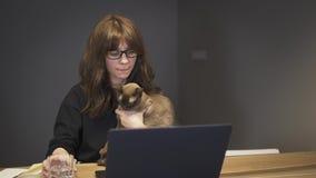 Δακτυλογράφηση γυναικών ένα lap-top που παίρνει μια γουλιά του νερού που κρατά μια γκρίζα γάτα απόθεμα βίντεο