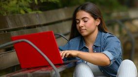 Δακτυλογράφηση γυναικών ένα lap-top σε ένα πάρκο απόθεμα βίντεο