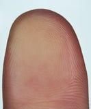 Δακτυλικό αποτύπωμα του αντίχειρα Στοκ Εικόνες