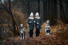 Δαλματικά σκυλιά πορτρέτου κοριτσιών διδύμων στοκ φωτογραφίες με δικαίωμα ελεύθερης χρήσης