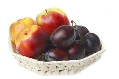 δαμάσκηνα νεκταρινιών μήλω& στοκ εικόνα με δικαίωμα ελεύθερης χρήσης
