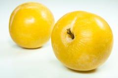 δαμάσκηνο δύο κίτρινο στοκ εικόνα