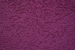 Δαμάσκηνο χρώματος τοίχων Στοκ Φωτογραφίες