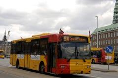 ΔΑΝΙΚΗ ΜΥΓΑ ΣΗΜΑΙΩΝ ΣΤΑ ΓΕΝΈΘΛΙΑ ΠΡΙΓΚΗΠΩΝ BENEDIKE Στοκ εικόνα με δικαίωμα ελεύθερης χρήσης