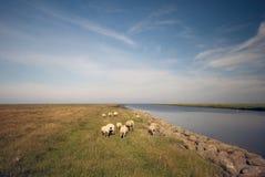Δανικό τοπίο Στοκ εικόνα με δικαίωμα ελεύθερης χρήσης
