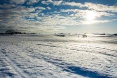 Δανικό χειμερινό τοπίο IV Στοκ εικόνα με δικαίωμα ελεύθερης χρήσης
