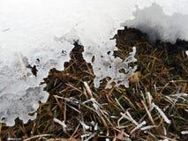 Δαντέλλα του πάγου Στοκ φωτογραφίες με δικαίωμα ελεύθερης χρήσης