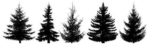 Δασικά δέντρα καθορισμένα Απομονωμένη διανυσματική σκιαγραφία ελεύθερη απεικόνιση δικαιώματος