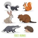 Δασικά ζώα κινούμενων σχεδίων καθορισμένα Μεφίτιδα, σκαντζόχοιρος, λαγοί, σκίουρος, ασβός και κάστορας Αστεία κωμική συλλογή πλασ διανυσματική απεικόνιση