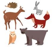 Δασικά ζώα κινούμενων σχεδίων καθορισμένα Στοκ φωτογραφία με δικαίωμα ελεύθερης χρήσης