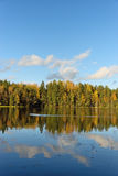 Δασικά και παλαιά δέντρα κάτω από το μπλε ουρανό στην ακτή της λίμνης Στοκ εικόνες με δικαίωμα ελεύθερης χρήσης