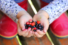 Δασικά μούρα εκμετάλλευσης μικρών κοριτσιών στους ανοικτούς φοίνικες Στοκ Εικόνα