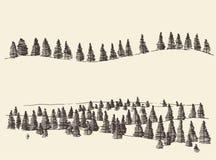 Δασικά περιγράμματα του FIR που χαράσσουν στα βουνά Στοκ φωτογραφία με δικαίωμα ελεύθερης χρήσης