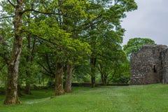 Δασικά πλαίσια Inverlochy Castle, Σκωτία Στοκ Εικόνες