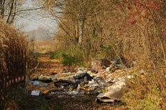 δασικά σκουπίδια στοκ εικόνες