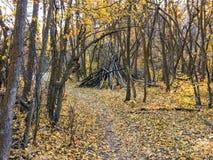 Δασικές απόψεις πτώσης φθινοπώρου που μέσω των δέντρων στο ροδαλό κίτρινο δίκρανο φαραγγιών και το μεγάλο ίχνος βράχου στα βουνά  στοκ φωτογραφία