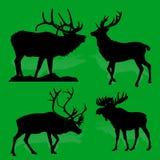 Δασικές ελάφια και άλκες θηλαστικών ζώων συλλογής, σε ένα πράσινο β Στοκ Φωτογραφίες