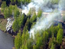 Δασικές πυρκαγιές στον ποταμό την άνοιξη στοκ εικόνα με δικαίωμα ελεύθερης χρήσης