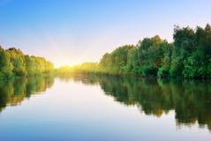 δασική άνοιξη ποταμών Στοκ φωτογραφίες με δικαίωμα ελεύθερης χρήσης