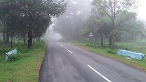 Δασική άποψη τοπίων Srisailam, Άντρα Πραντές, Ινδία στοκ φωτογραφία με δικαίωμα ελεύθερης χρήσης