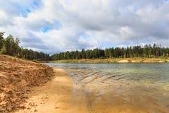 Δασική λίμνη παραλιών προκυμαιών Στοκ εικόνα με δικαίωμα ελεύθερης χρήσης