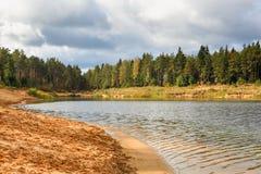 Δασική λίμνη παραλιών προκυμαιών Στοκ φωτογραφία με δικαίωμα ελεύθερης χρήσης