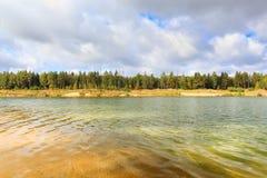 Δασική λίμνη παραλιών προκυμαιών Στοκ Εικόνες