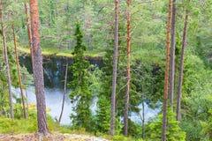 Δασική λίμνη στο δάσος Στοκ Φωτογραφία
