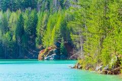Δασική λίμνη την πρώιμη άνοιξη την ηλιόλουστη ημέρα Στοκ εικόνες με δικαίωμα ελεύθερης χρήσης