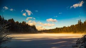 Δασική λίμνη το χειμώνα Στοκ εικόνα με δικαίωμα ελεύθερης χρήσης