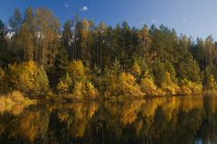 Δασική λίμνη φθινοπώρου Στοκ Εικόνες