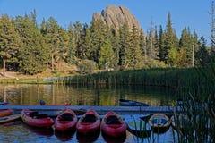 Δασική ακτή λιμνών στο κρατικό πάρκο Custer στοκ φωτογραφία