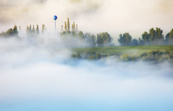 Δασική βουνοπλαγιά στο χαμηλό να βρεθεί σύννεφο με αειθαλή τον ομο Στοκ φωτογραφίες με δικαίωμα ελεύθερης χρήσης