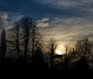 Δασική γυμνή σκιαγραφία δέντρων ενάντια στα άσπρα σύννεφα στο ηλιοβασίλεμα Στοκ Φωτογραφία