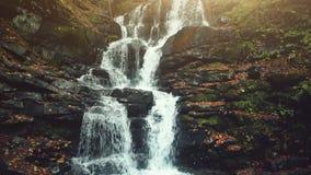 Δασική θέα φθινοπώρου καταρρακτών ρευμάτων βουνών foamy φιλμ μικρού μήκους