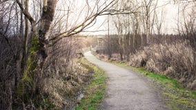 Δασική διάβαση φθινοπώρου Στοκ φωτογραφία με δικαίωμα ελεύθερης χρήσης